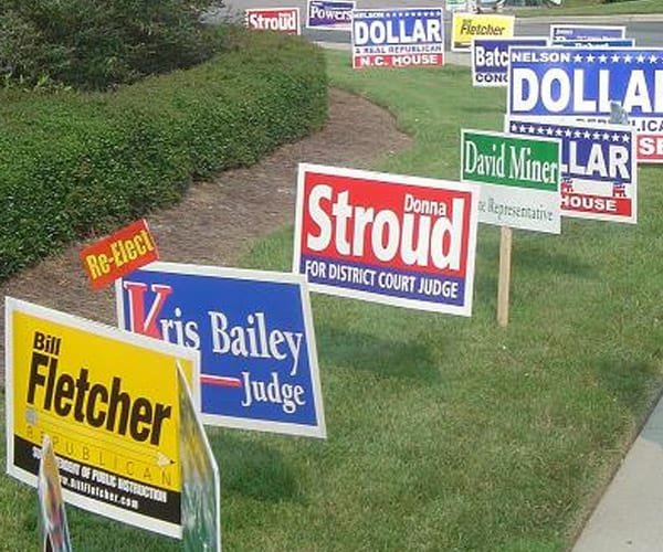 Political Signs in curb grass