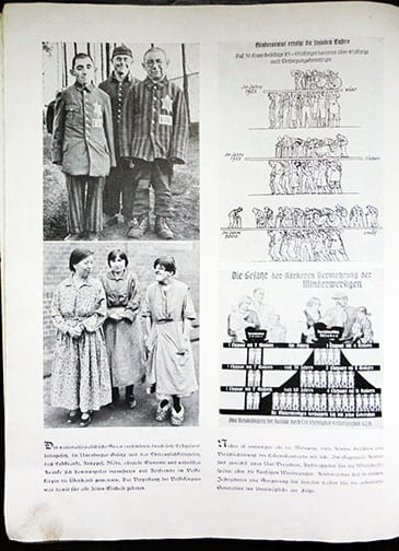 1941 REICHSFÜHRER-SS PUBLICATION ON THE FUTURE OF THE ARYAN RACE