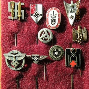 LOT OF TEN (10) ORIGINAL THIRD REICH STICKPINS